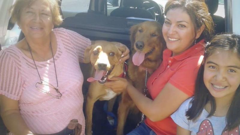 Boby avec sa nouvelle famille adoptive