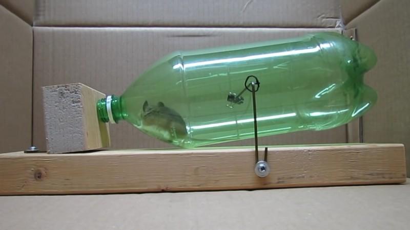 Cette astuce est la fa on la plus humaine de pi ger une souris - Piege a souris fait maison ...