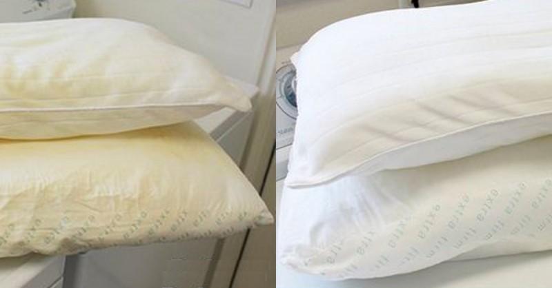 Comment Laver Correctement Les Oreillers En Plumes Devenus Jaunatres