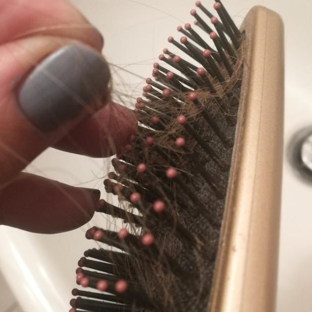 cheveux sur brosse à cheveux