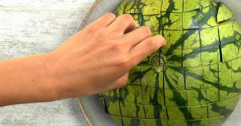 pastèque coupée en en petits carrés