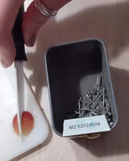 petite boîte à clous remplie de clous en fouillis avant l'expérience