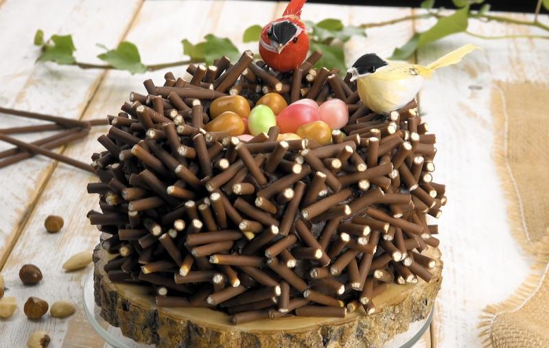 gâteau nid d'oiseaux avec de Mikados