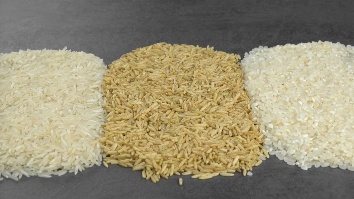 riz long, riz rond, et riz complet