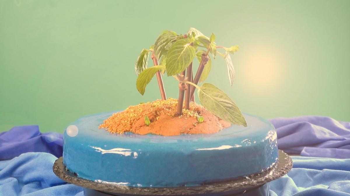 gâteau île