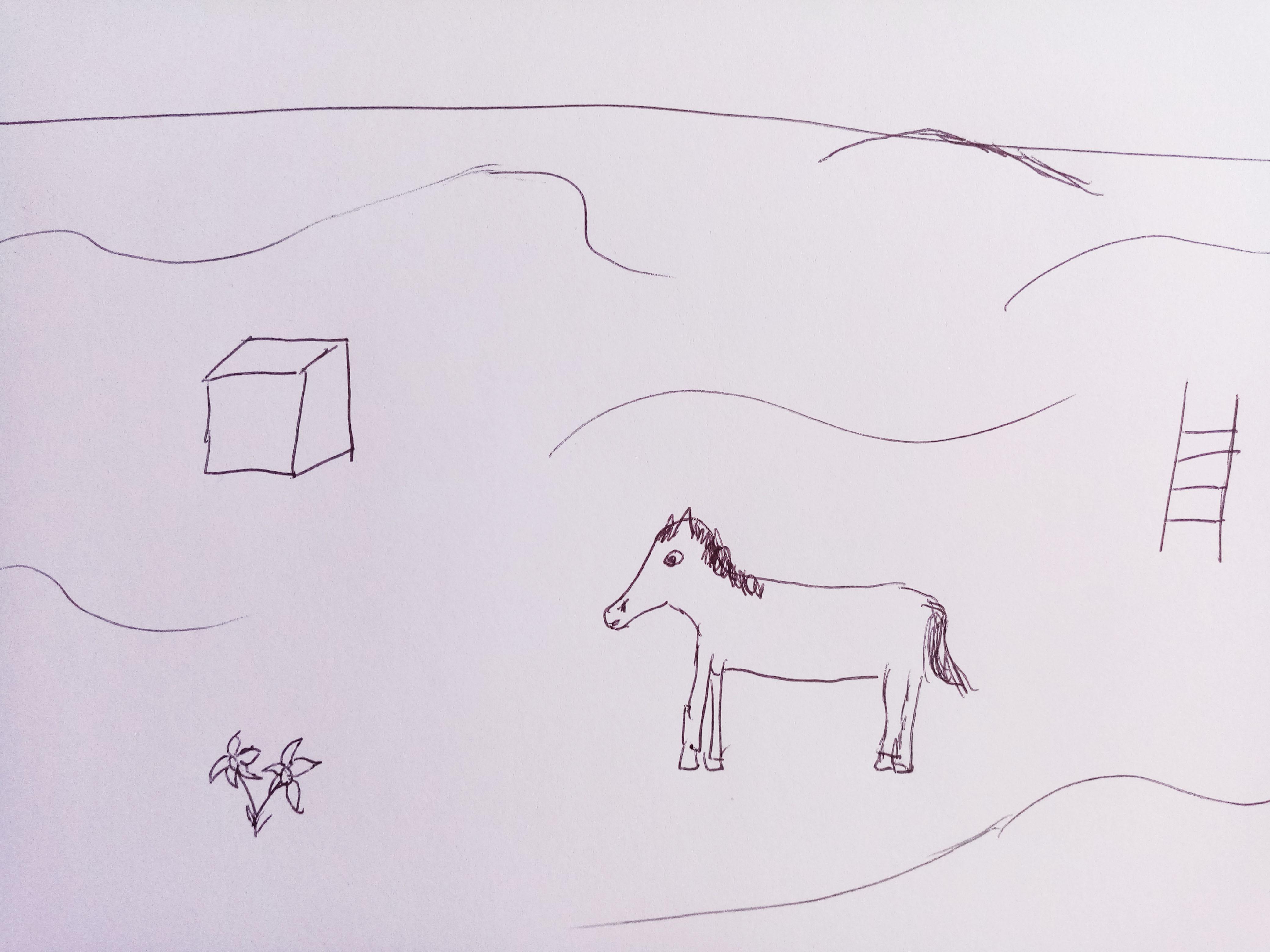 cube, cheval, échelle, fleurs et désert dessinés sur une feuille