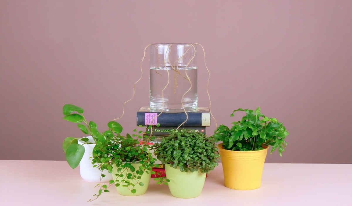 use a string to water the plants when no one is around