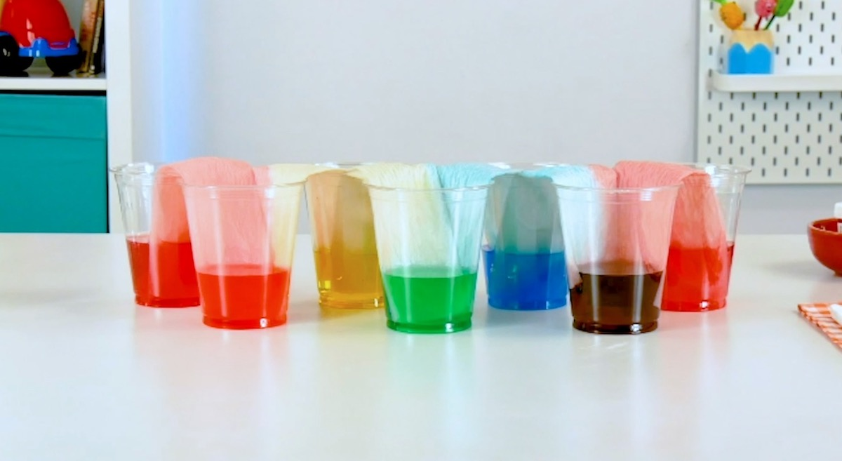 gobelets colorés