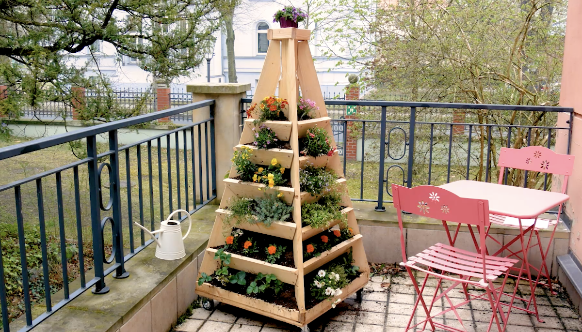 jardin pyramidal vertical