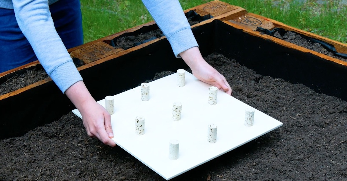 utiliser des bouchons de liège pour avoir des semis réguliers