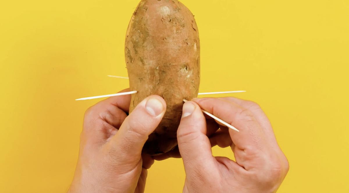 planter 4 cure-dents dans la patate douce