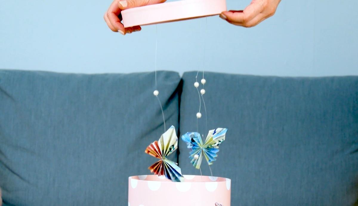 papillons dans une boite