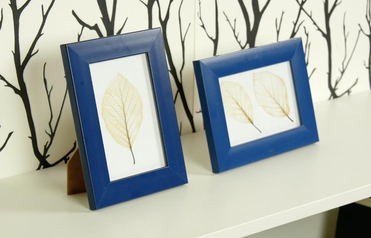 Idée DIY : faites blanchir des feuilles pour des déco surprenantes
